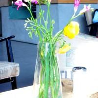 Blumen im Elbgold