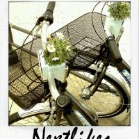 Nextbikes mit Blumen