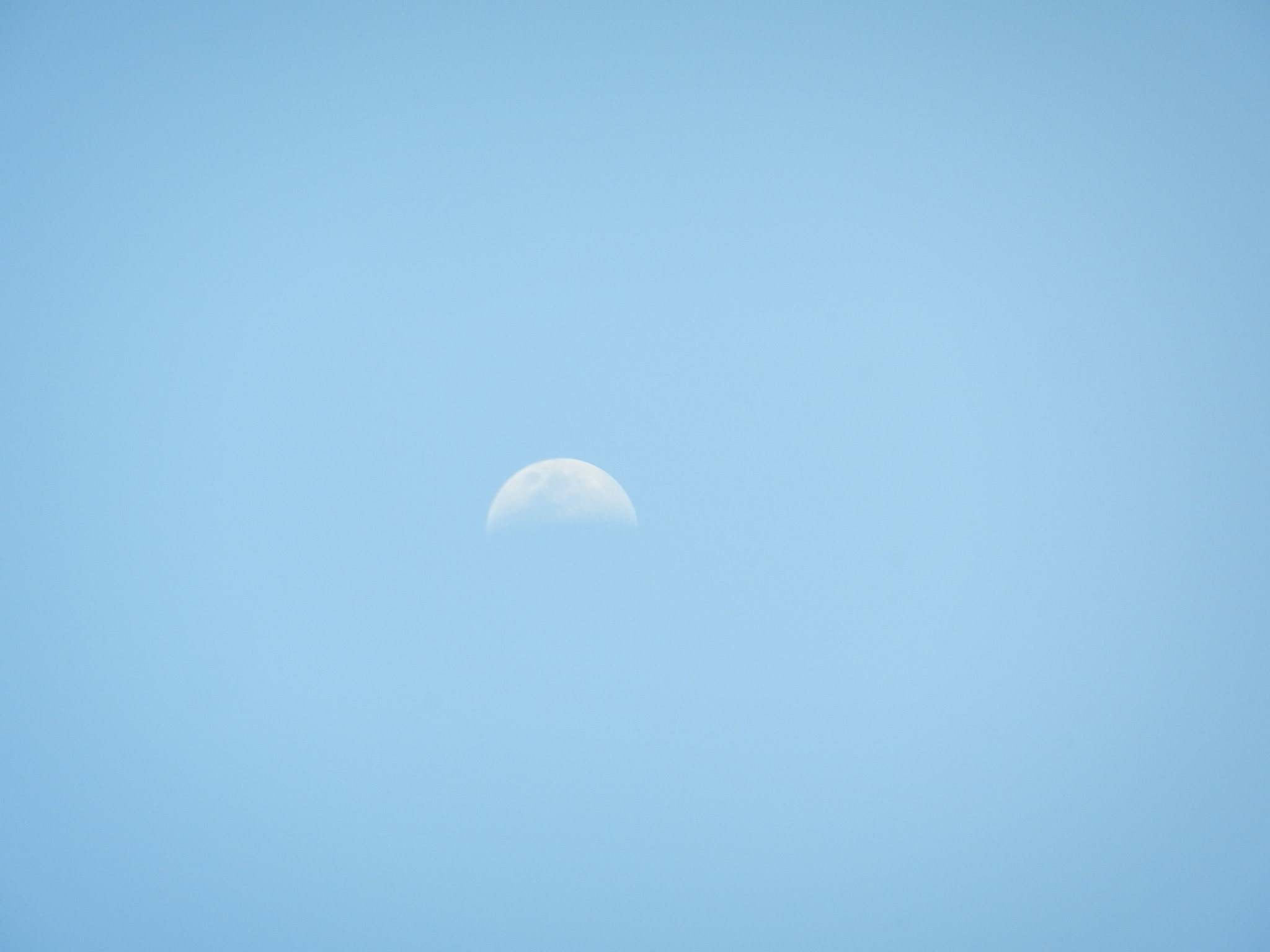 Mondschein am Tag